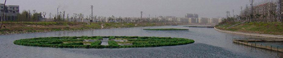 Aquaponics floating wetlands and floating islands