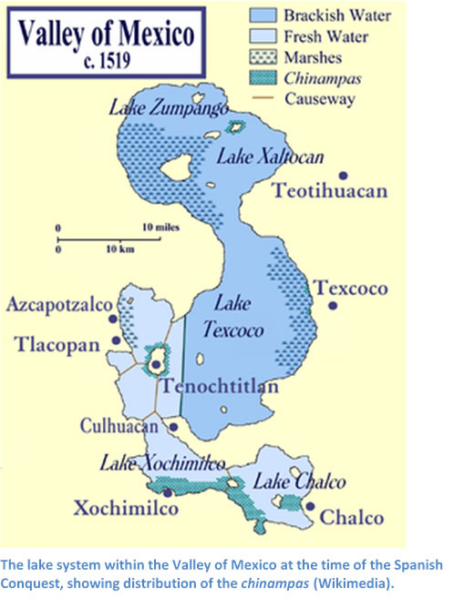 Mexico lake chinampas
