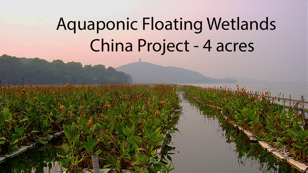 AquaBiofilter Aquaponics Floating Wetlands China 1920 x 1080 150 dpi