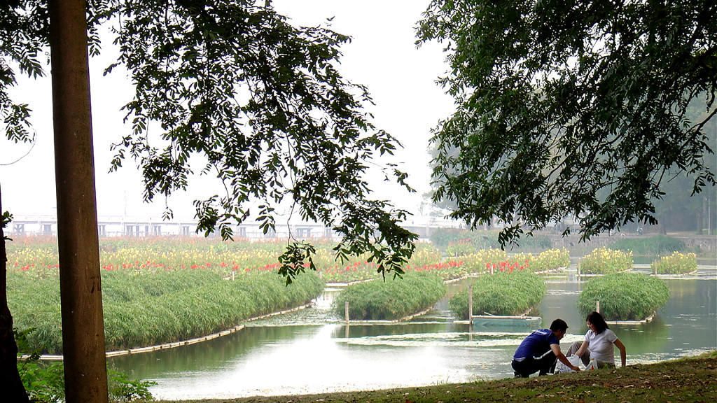 AquaBiofilter Floating Wetlands China 1920 x 1080 150 dpi