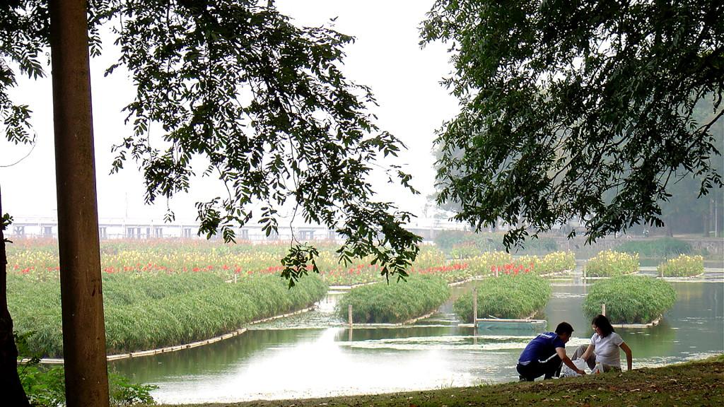 AquaBiofilter Floating Wetlands China 1920 x 1080 150 dpi